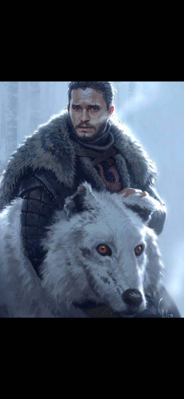 jon snow and ghost wallpaper by