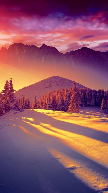 hd sunset winter