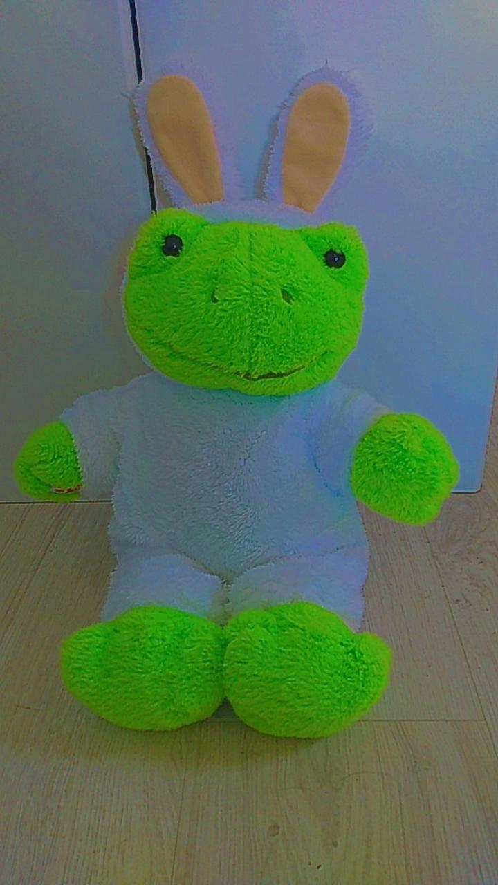 frog bunny costume