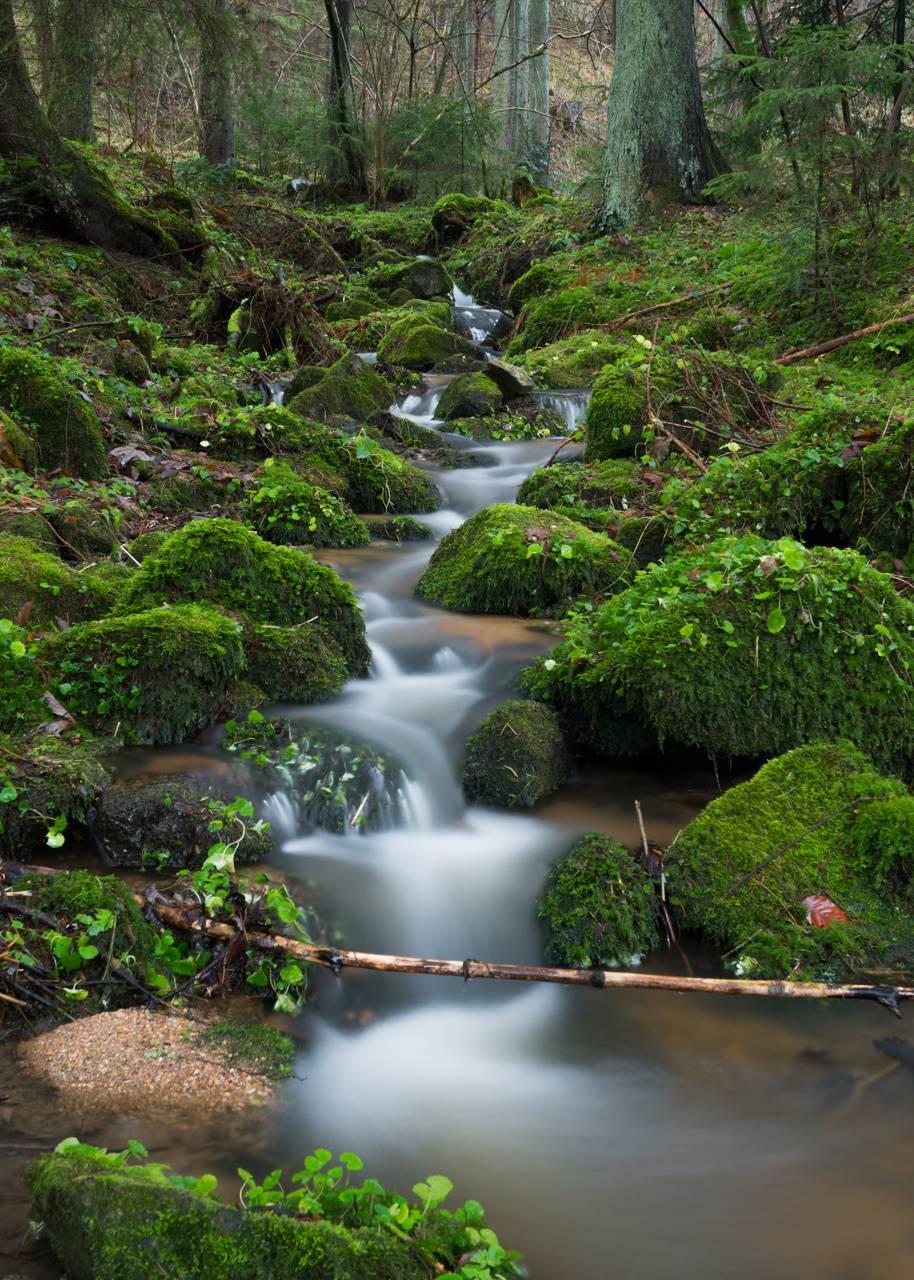 Austrian small river