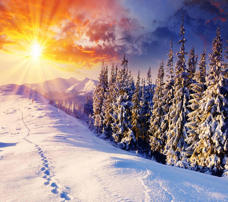 Beautiful Winter Sun
