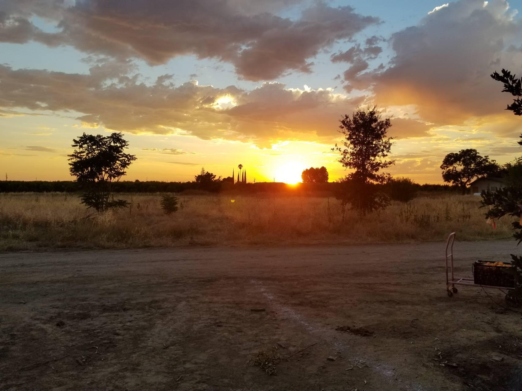 Fresno sunset