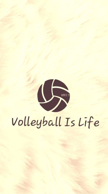 Love Volleyball Wallpapers Free By Zedge