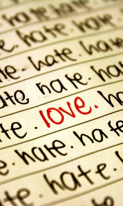 Love In Hate