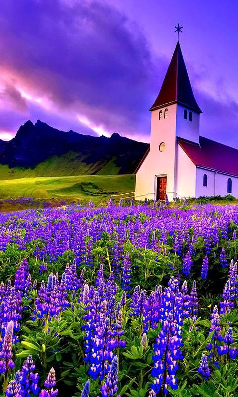 Peaceful Place