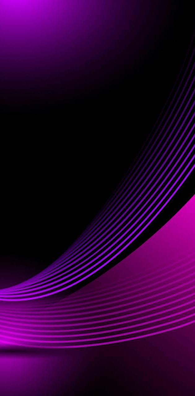 Abs Purple1