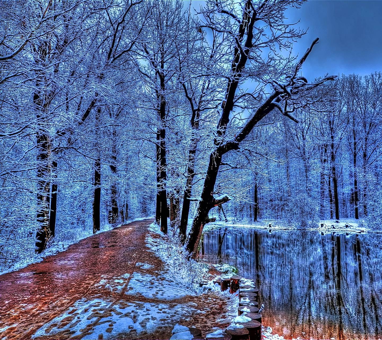 Winter P
