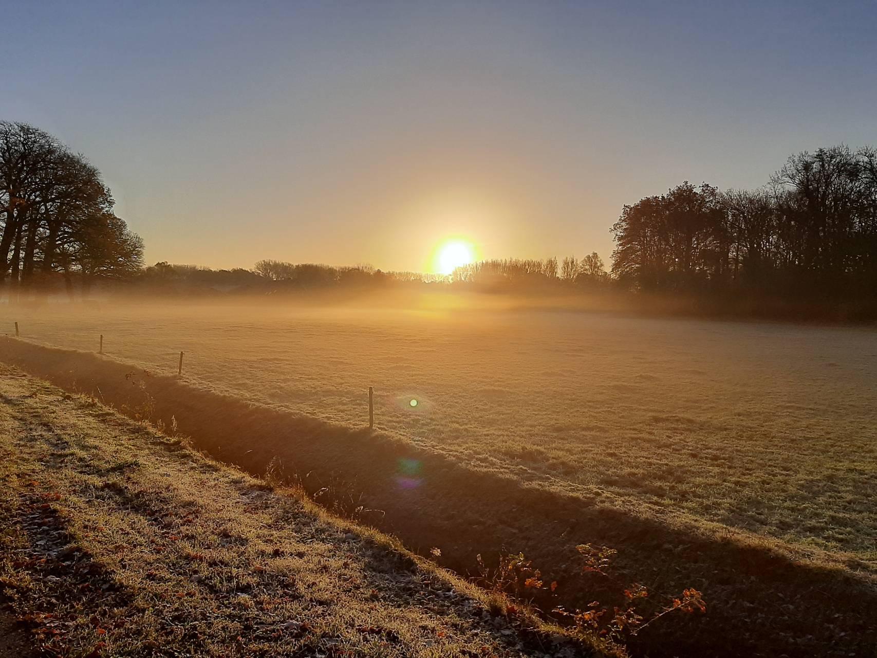 Sunrise in a meadow