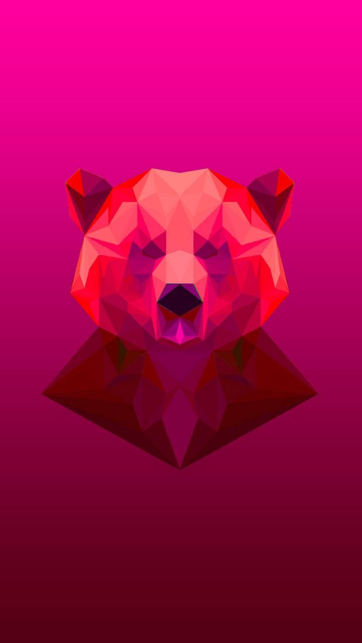 Polygon x Bear
