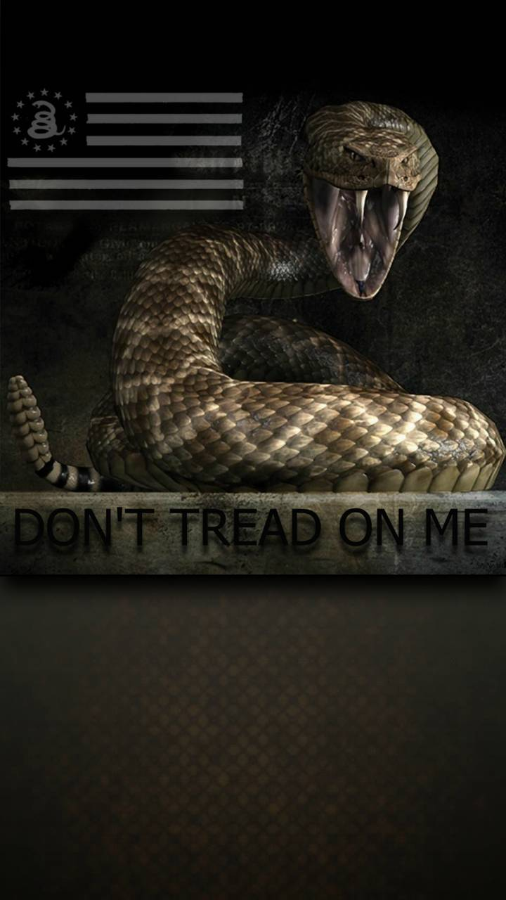Dont Tread On Me Wallpaper By Seth 214200 F6 Free On Zedge