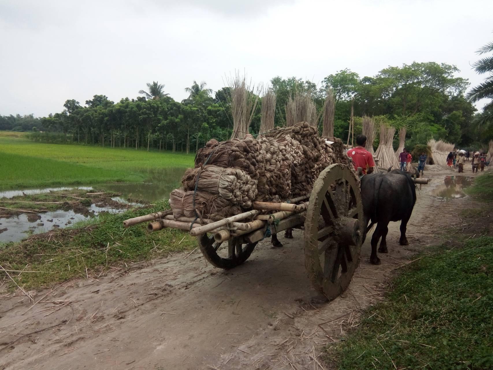 village Cargo