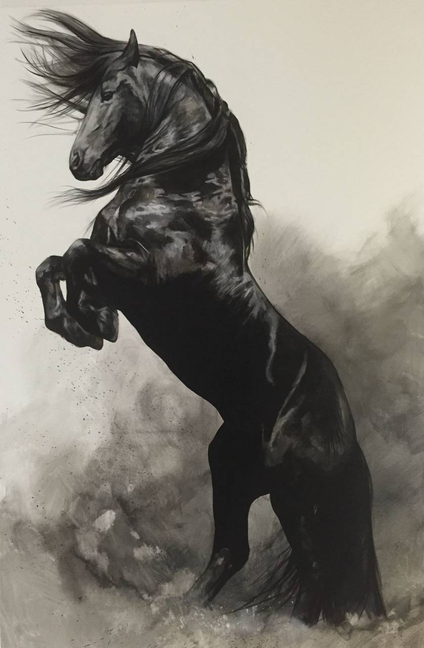 Black Horse Investments