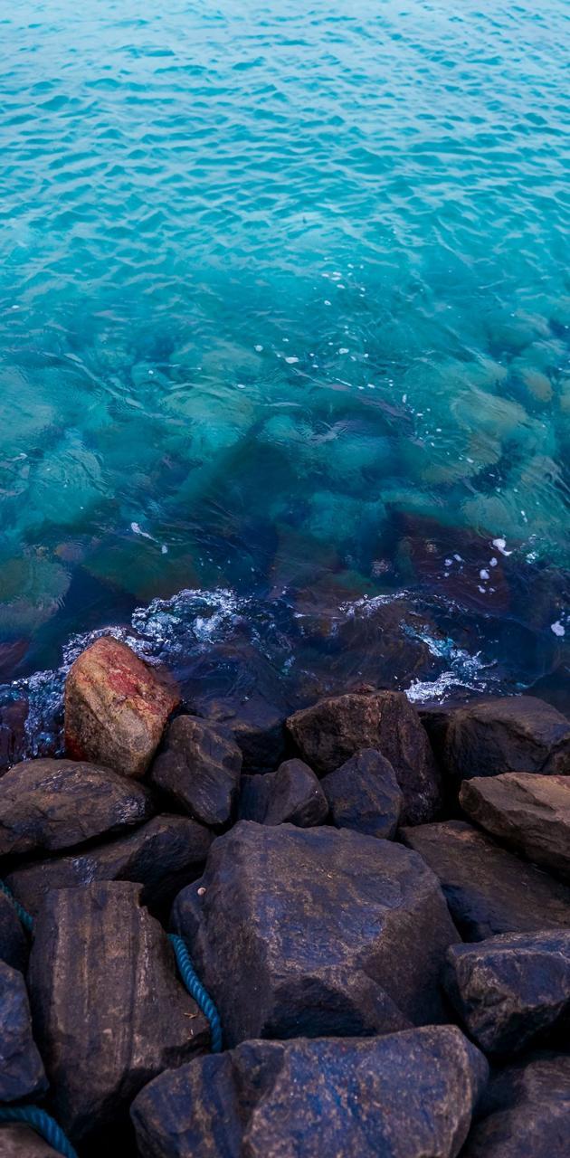 Seashore HD