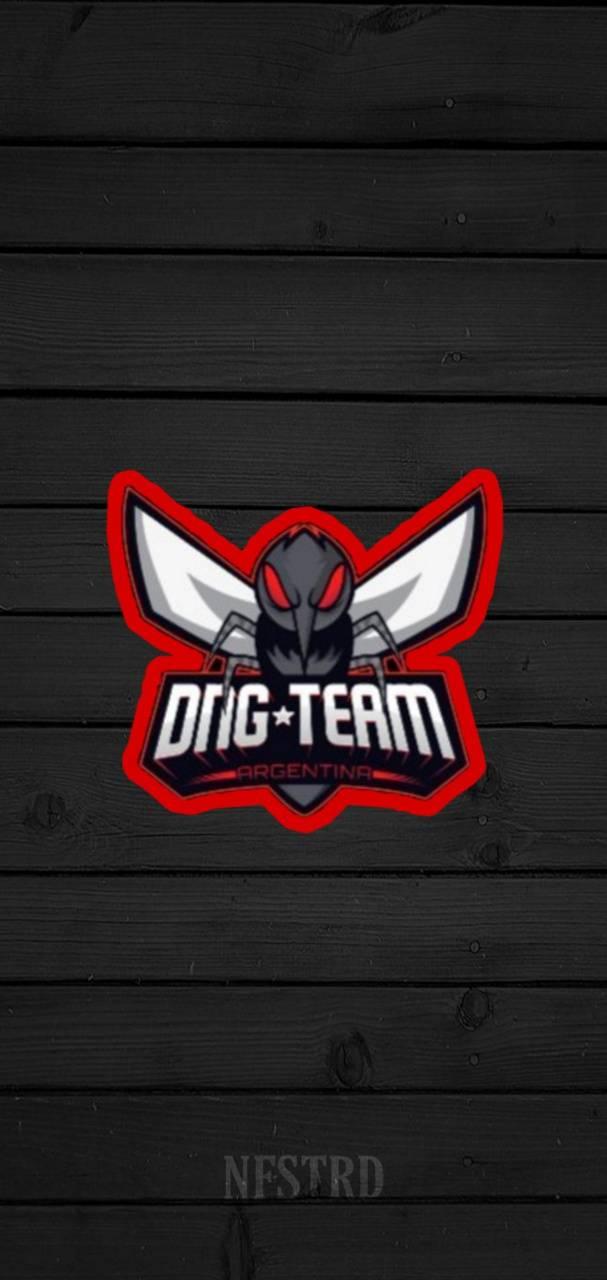 Dng team