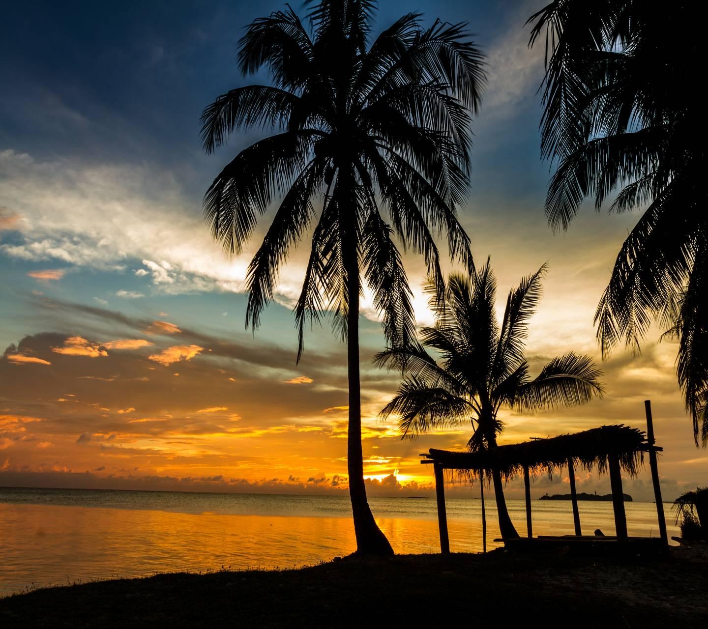 Tropical Shadow