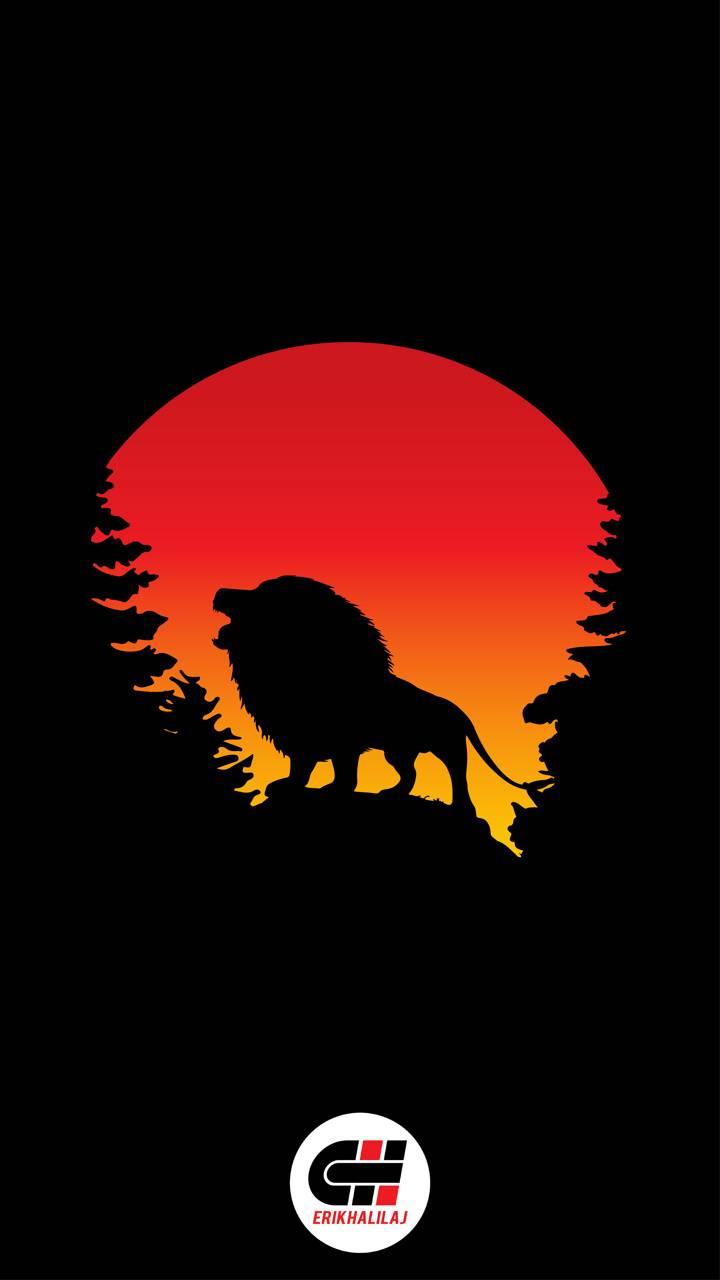 Lion 2k -erikhalilaj