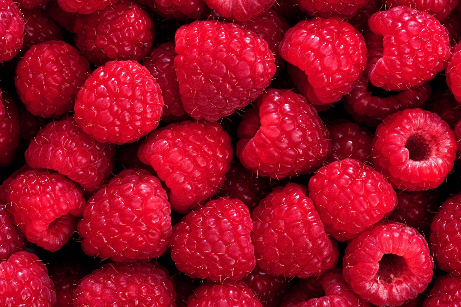 Rasberry wallpaper by nudge78 - 14 - Free on ZEDGE™