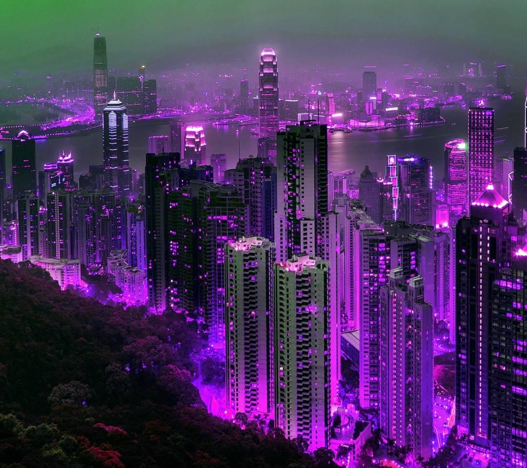 purple hong kong