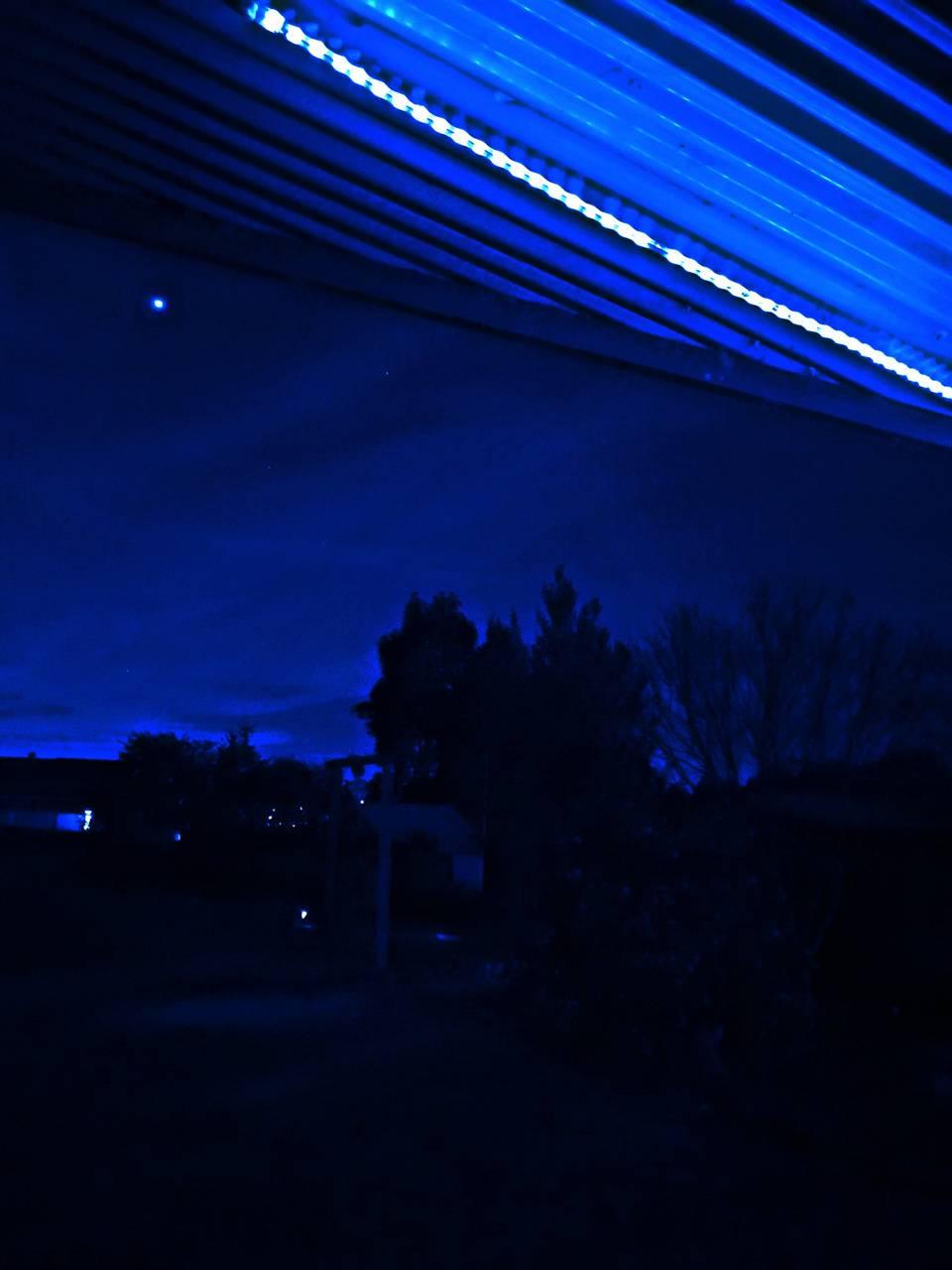 Neon blue night