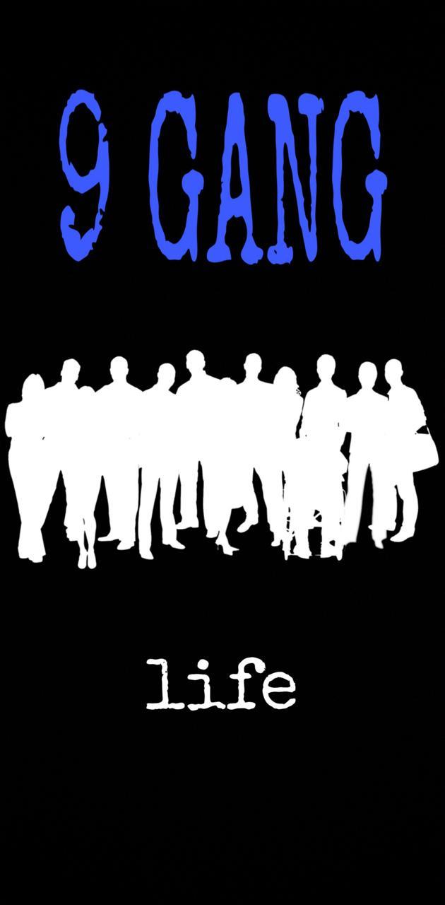 9 gang blue