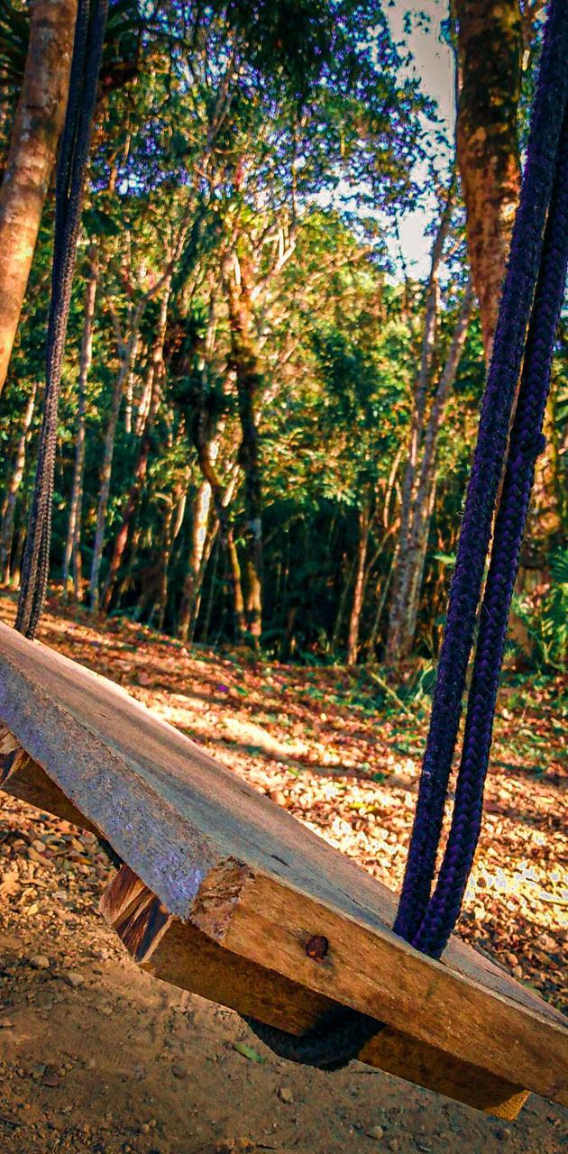 Balanco de madeira