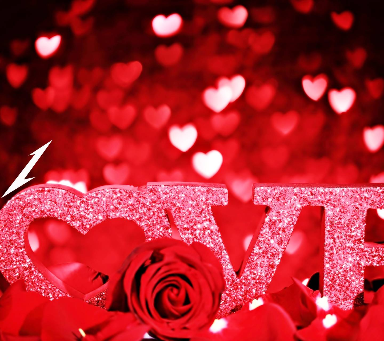 Love Rose Wallpaper By Ashu Astar Eb Free On Zedge