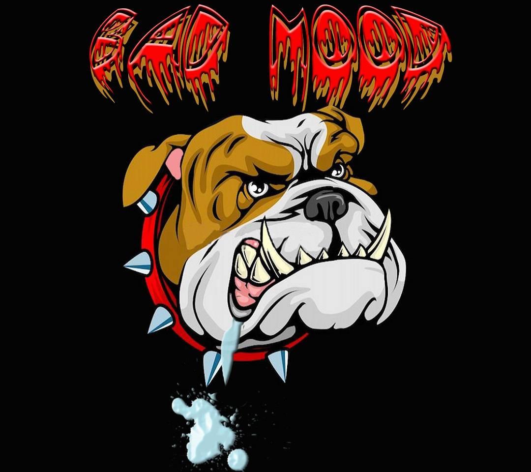 bad dogg