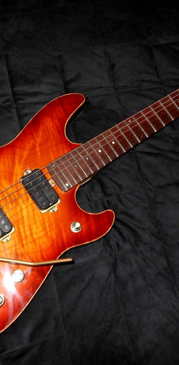 Buck Dharma Guitar
