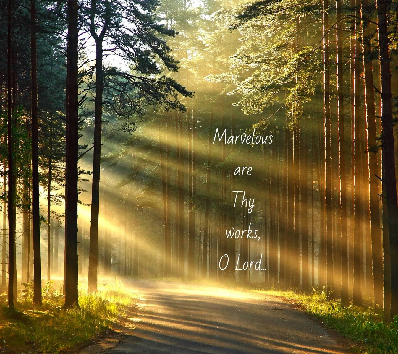 Marvelous of Thy Way