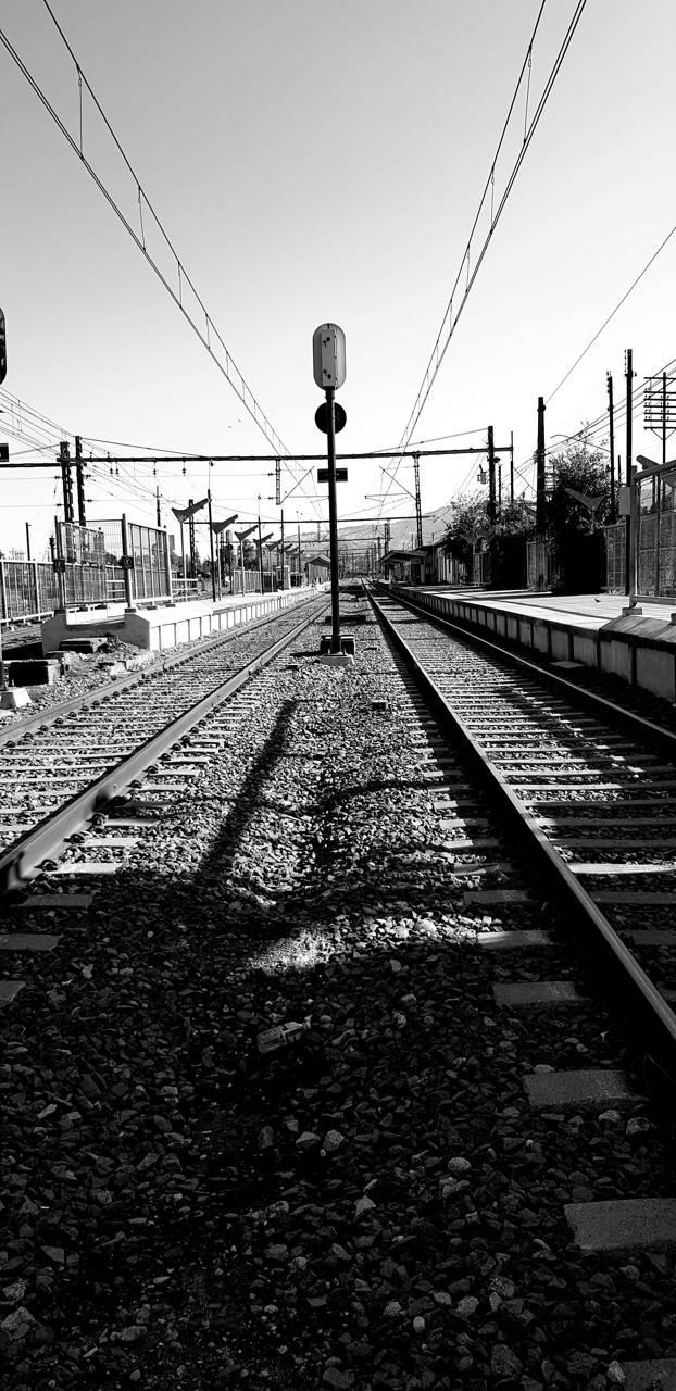Liena de tren
