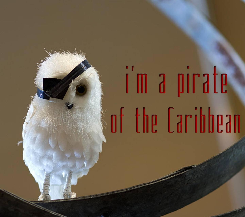 Pirate Of Caribbean