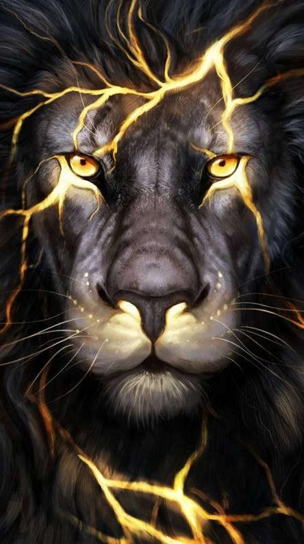 Magma lion