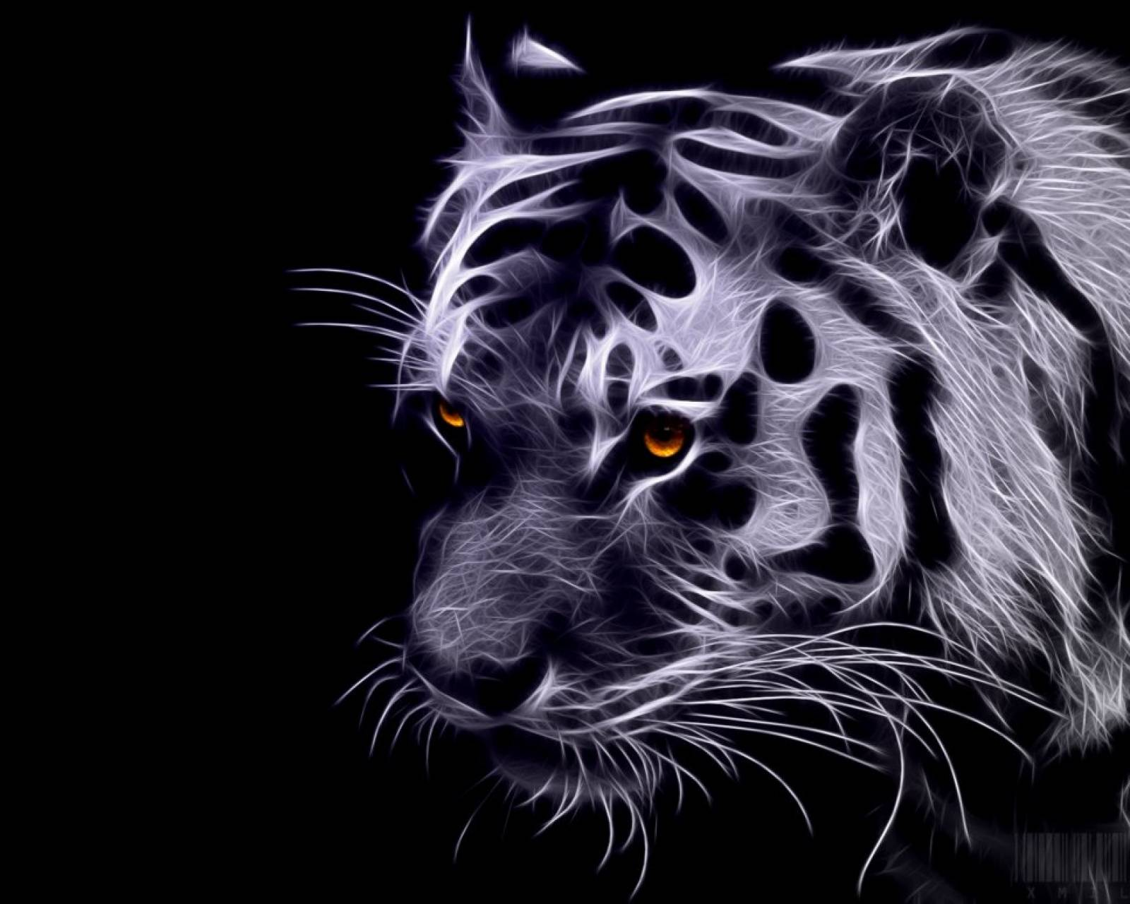 Gray tiger fractal