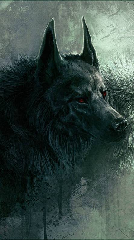 Wolfs Wallpapers - impremedia.net