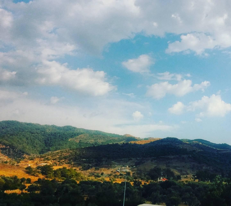 Green Of Mountain