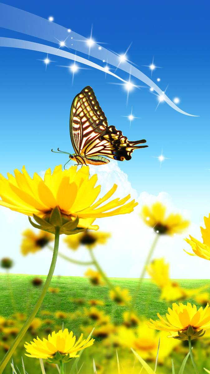 Butterfly Flowers Wallpaper By Darlingdriver 55 Free On