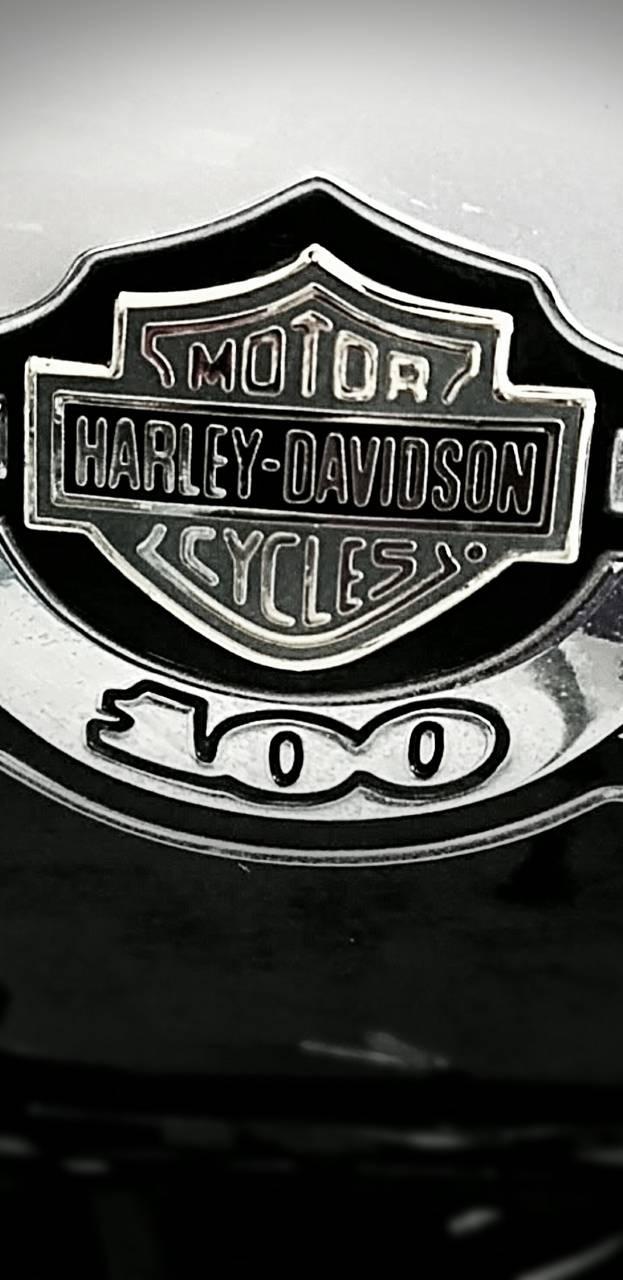 Harley Davidson 100