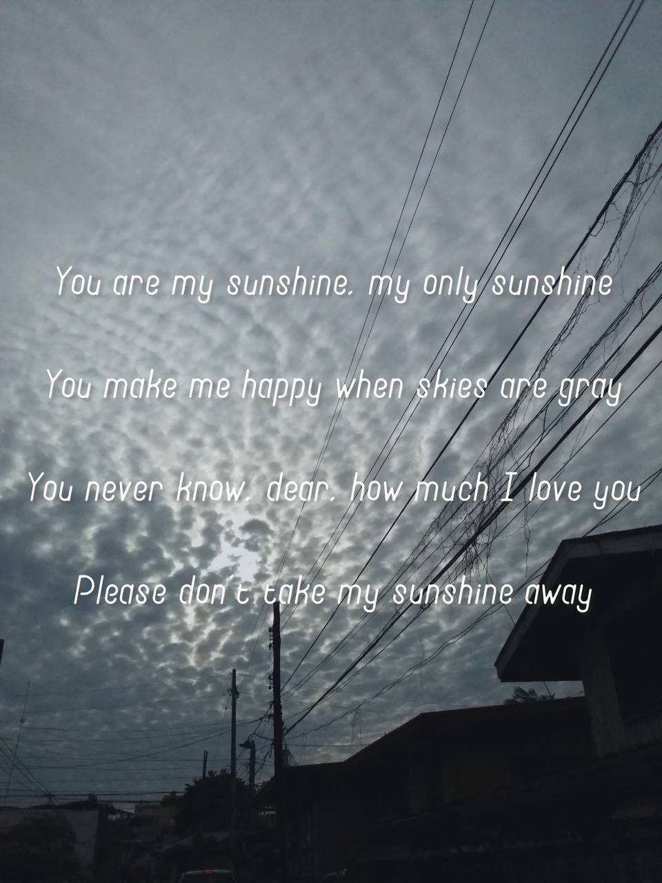 You Are My Sunshine Wallpaper By Ashdelossantos 16 Free On Zedge