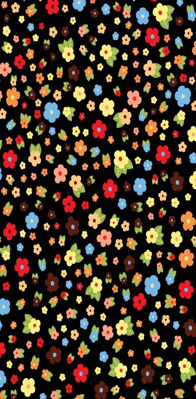 Multicolored daisy
