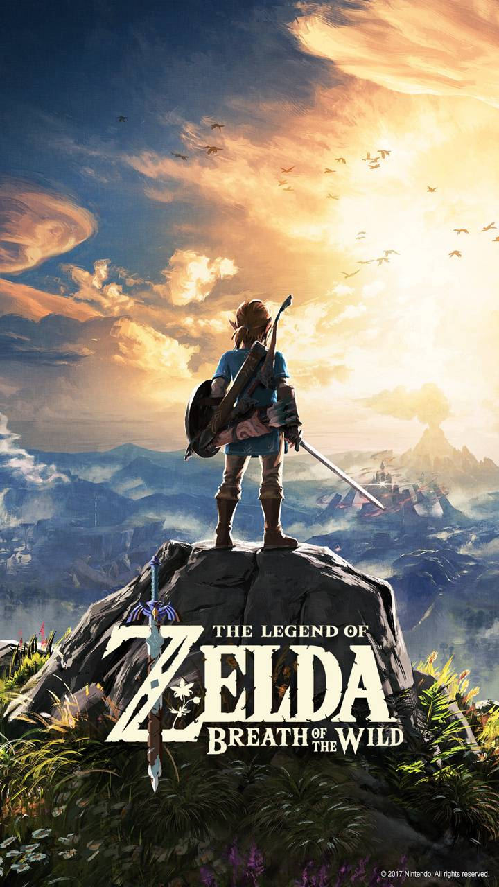 Legend of Zelda HD