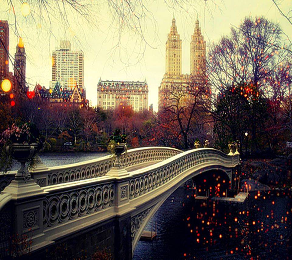 Hd Bridge