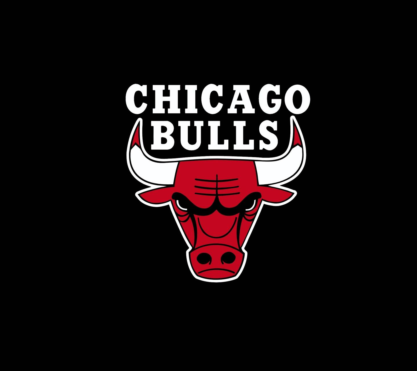 Download free chicago bulls wallpapers for your mobile phone by searching for chicago bulls in wallpapers gave 132 results voltagebd Choice Image