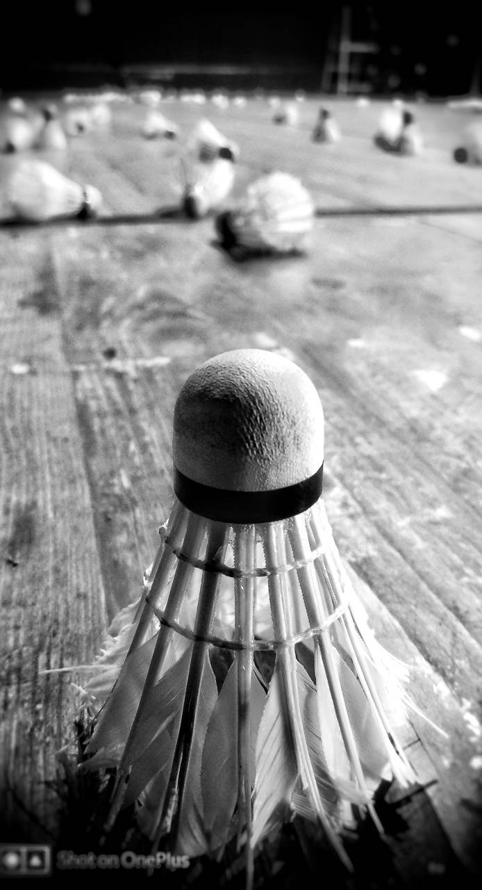 Badminton feather
