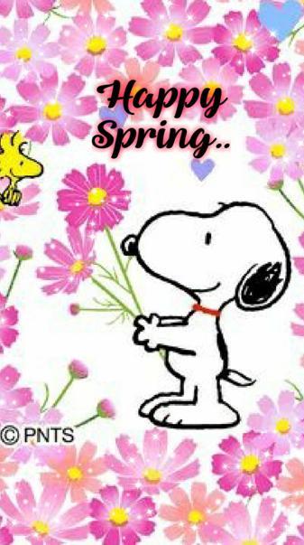 Snoopy sprin