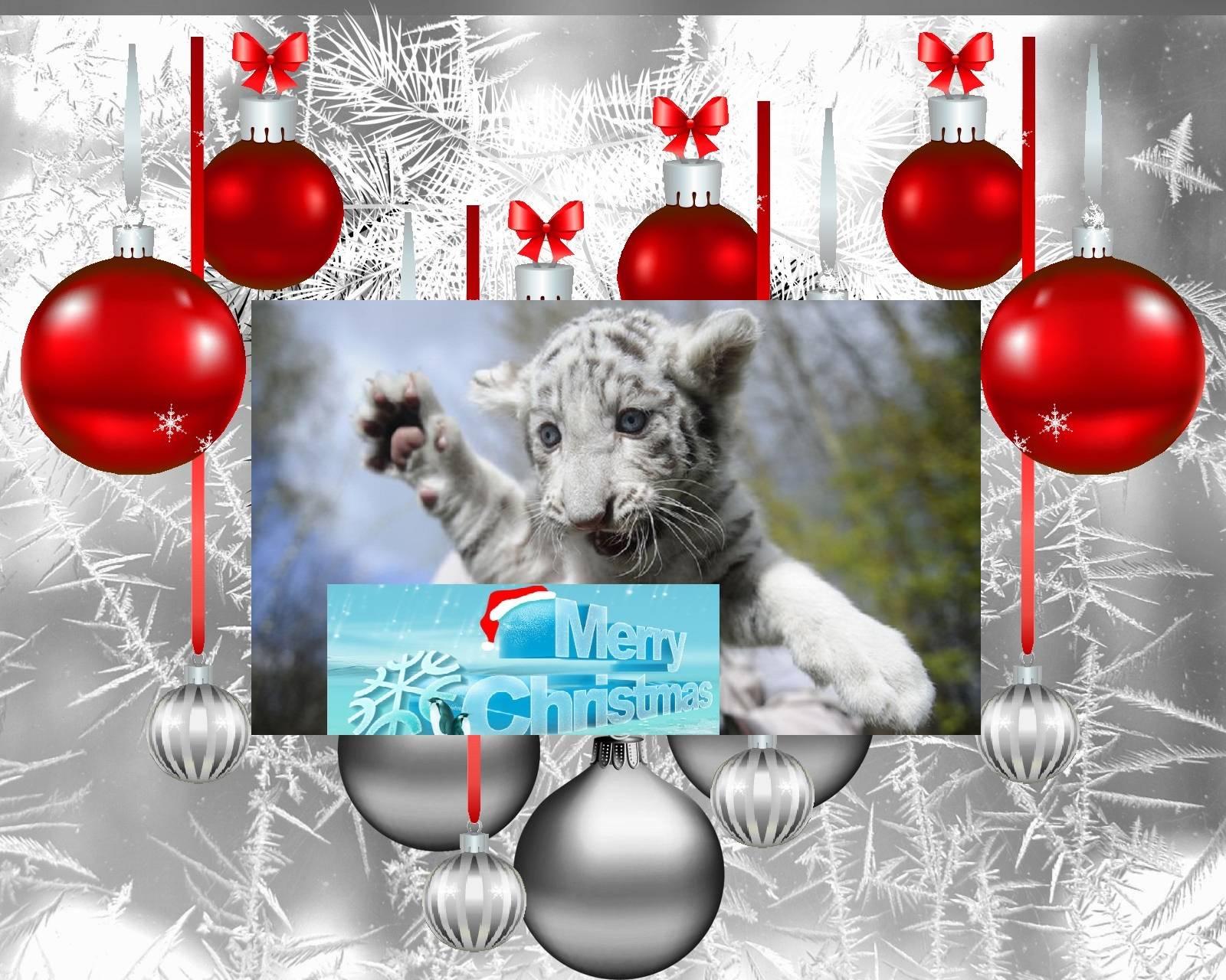White Tiger Christma