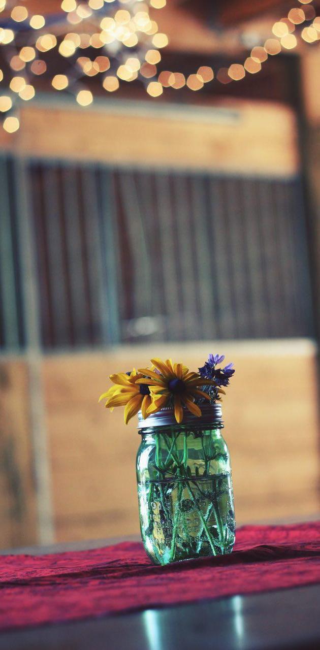 Jar-Nature