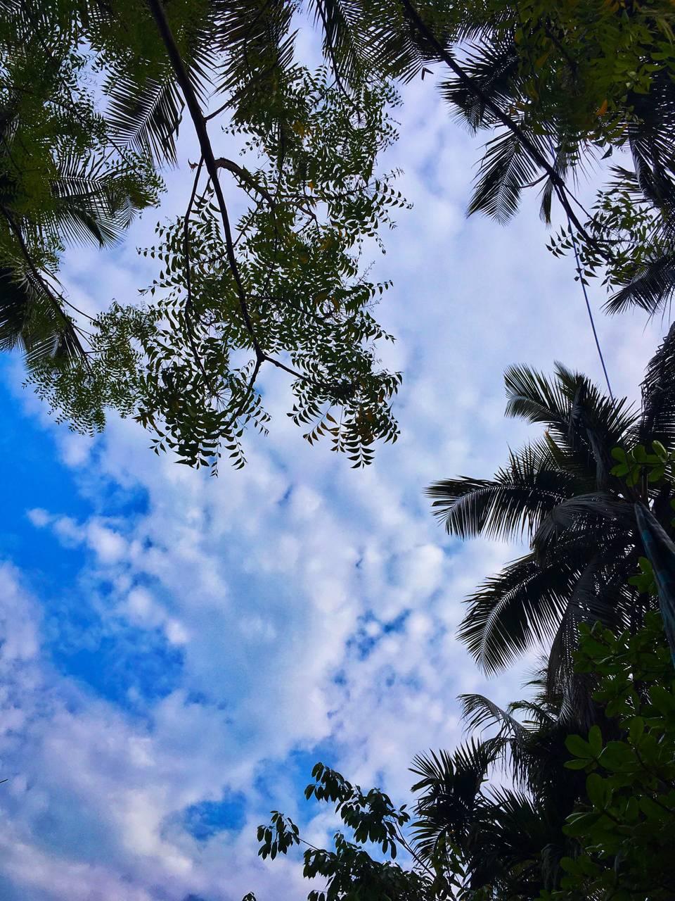 Bright Blue Sky 2