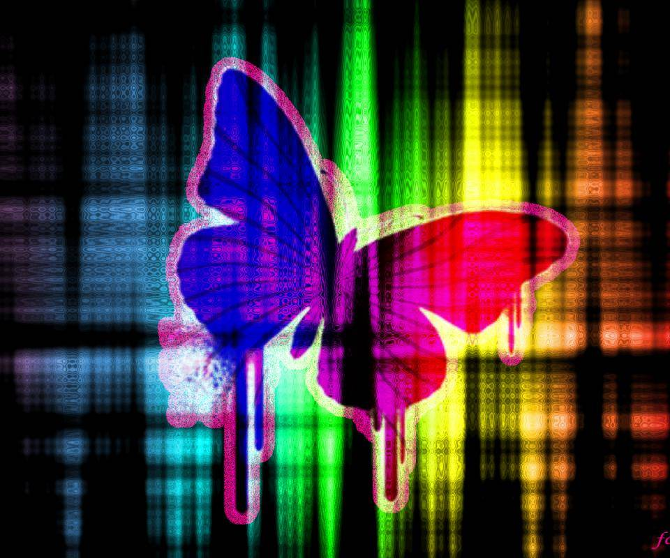 Colorful Butterfly Wallpaper By Honey61972 7a Free On Zedge