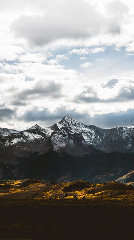 Fielded Mountains
