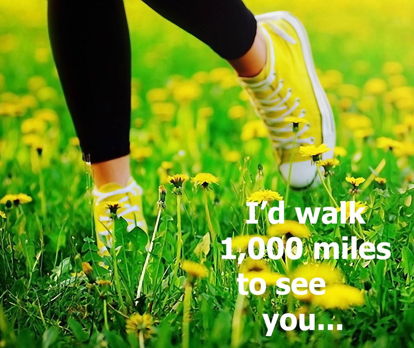 I Would Walk
